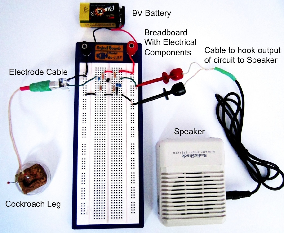 Experiment Transistor Circuit Design The Breadboard Of Above Is Shown Below Build