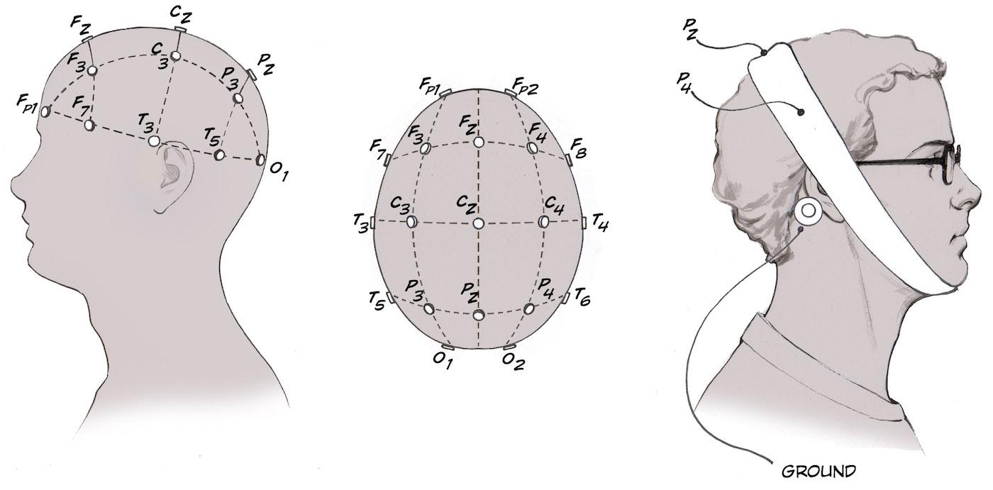 Experiment The Consciousness Detector EEG Oddball Task