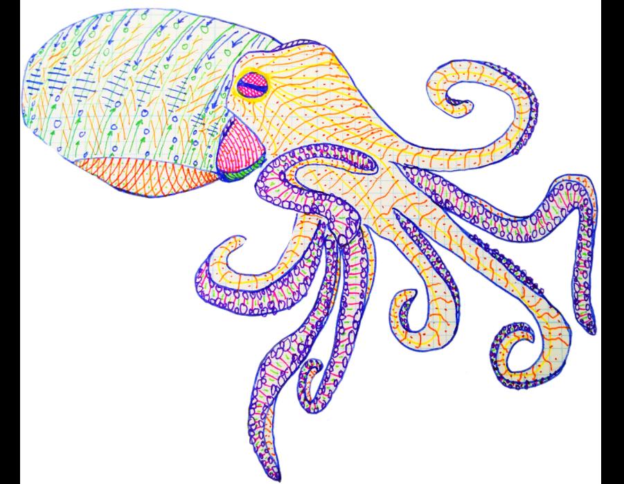 Experiment: Octopus Fighting