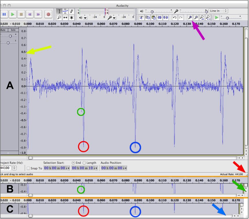 T Pain Effect Audacity