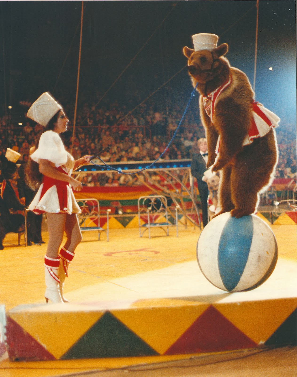 circus?