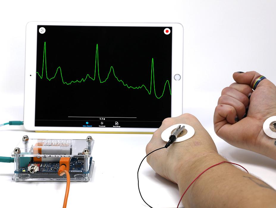 SpikerBox Pro de Corazón y Cerebro mostrando impulsos cardíacos