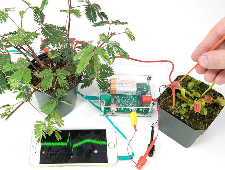 Electrofisiología en mimosa y venus atrapamosca