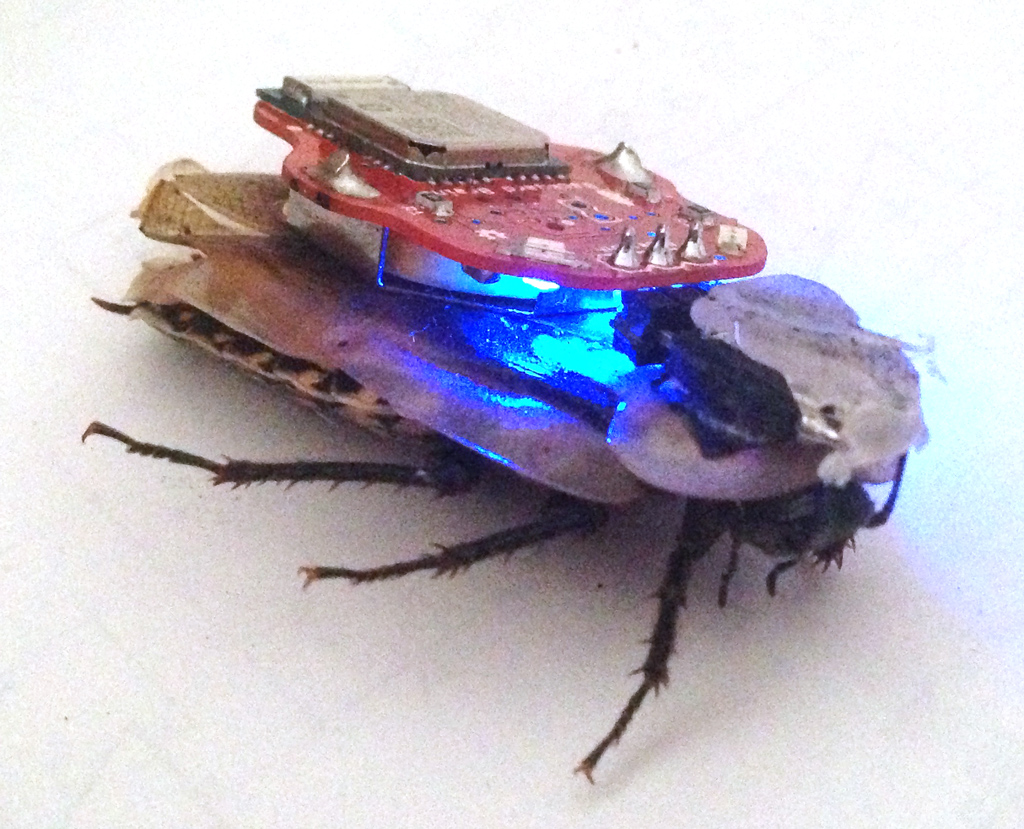 Control Lights With Smartphone The Roboroach Bundle